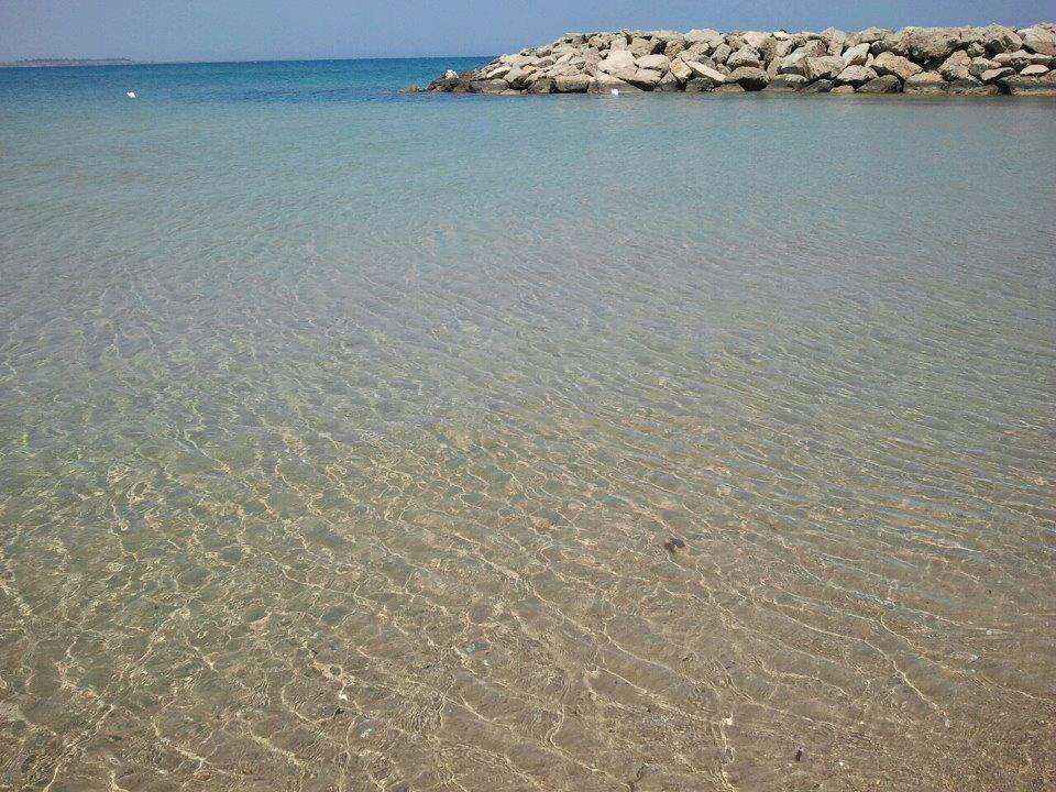 dettaglio spiaggia Campo di mare